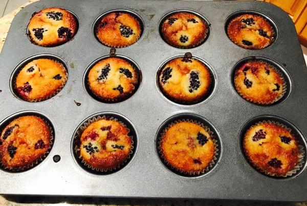 Harlan Kilstein's Completely Keto Blackberry Muffins